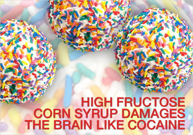 High Fructose Corn Syrup - HFCS